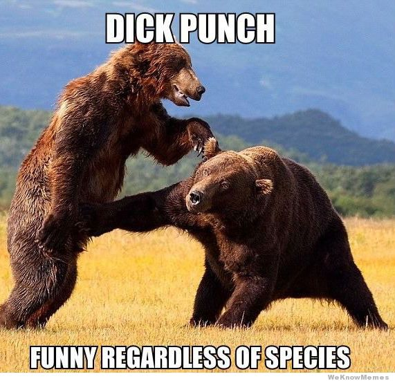bear-dick-punch.jpg