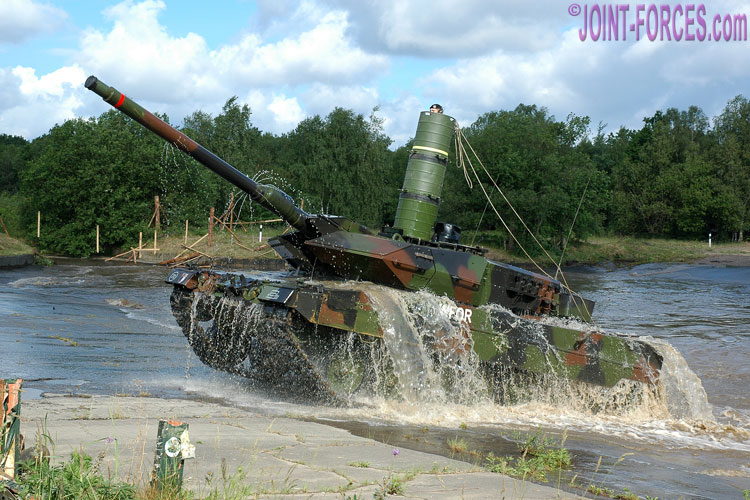 Leopard40-6-10.jpg