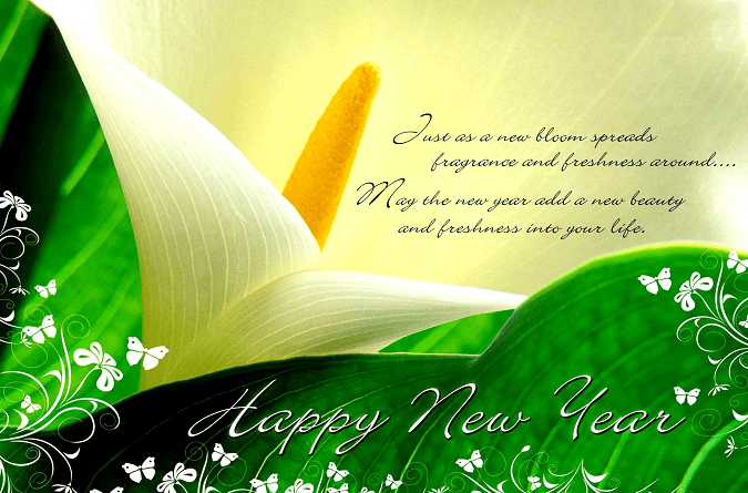 Love-New-Year-SMS-2016-Best-New-Year-Hindi-SMS-2-675x445.png